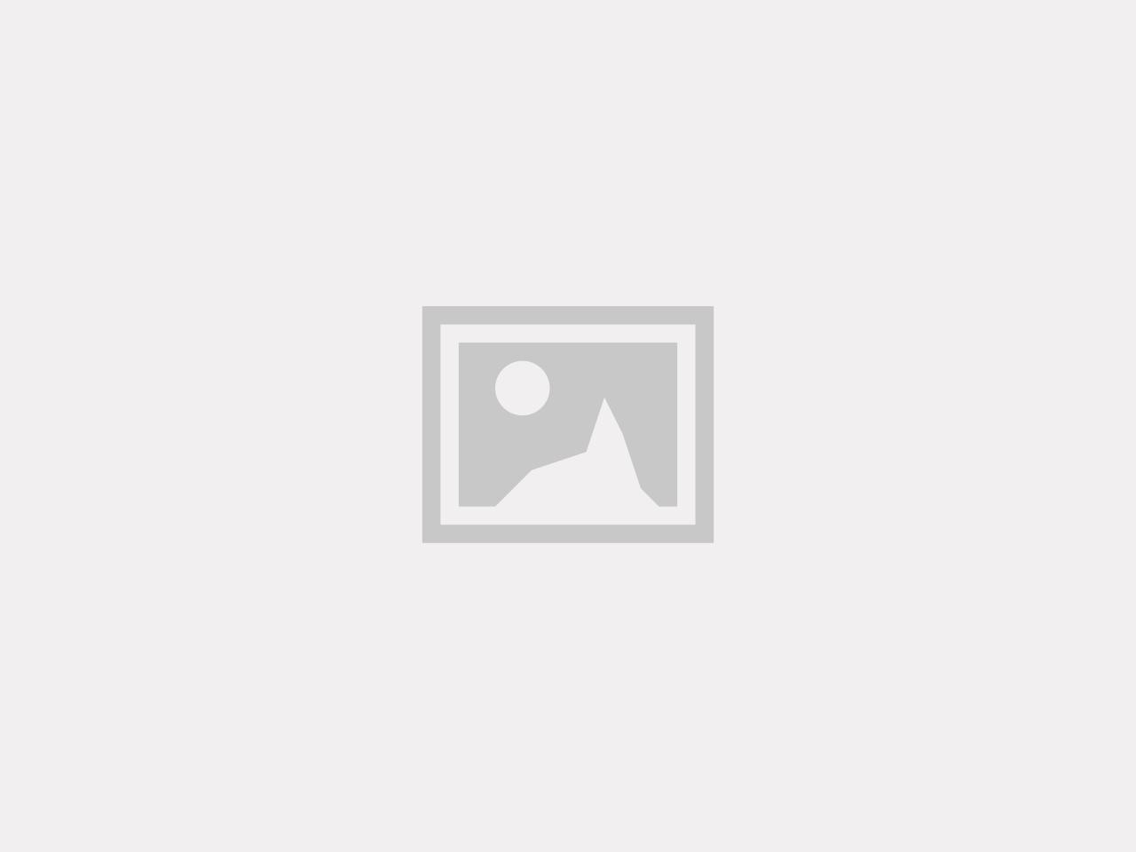 Artfex Skruvsatts  Grind Dubbeldörr 10006 & 10007